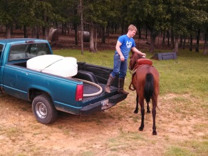 Getting on a horse from the bed of a truck