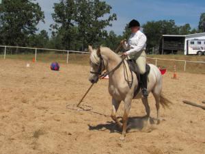Horseman of Arkansas Trail Challenge