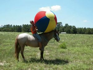 Having A Ball With Your Horse